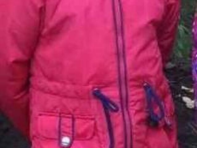 Куртка для девочки осень-весна р. 110 - 1