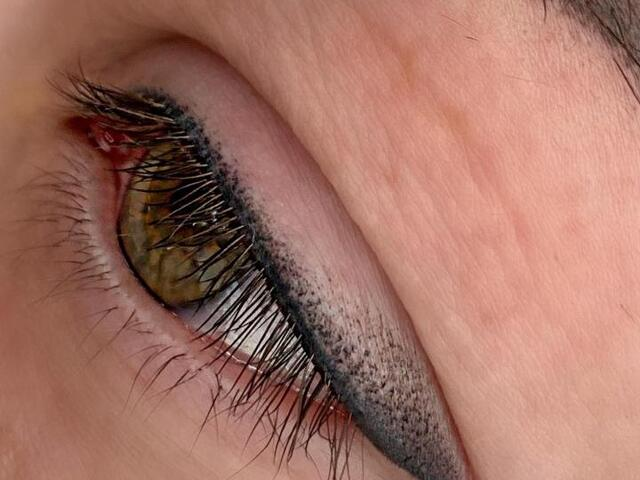 Обучение перманентному макияжу, Мастер класс - 2